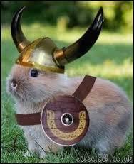 viking-bunny